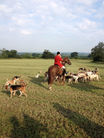 Gathering hounds at the end of the first morning