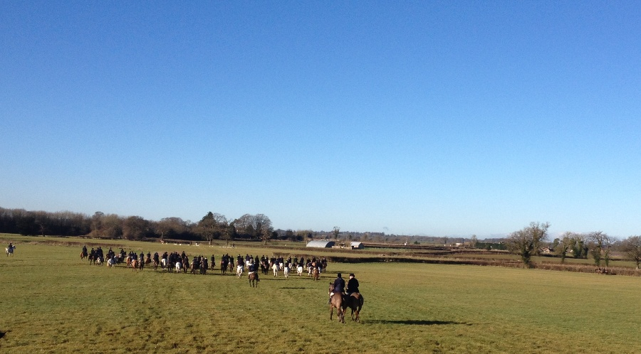 The field at the Duke of Beaufort's Hunt