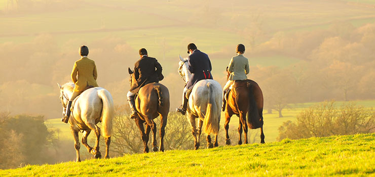 Hunting Vacation with the Blackmore Vale
