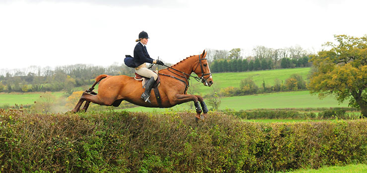 A foxhunting holiday in England