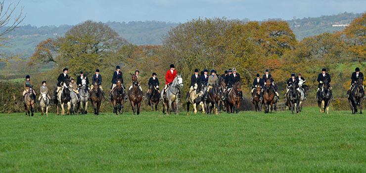 Blackmore & Sparkford Vale Hunt