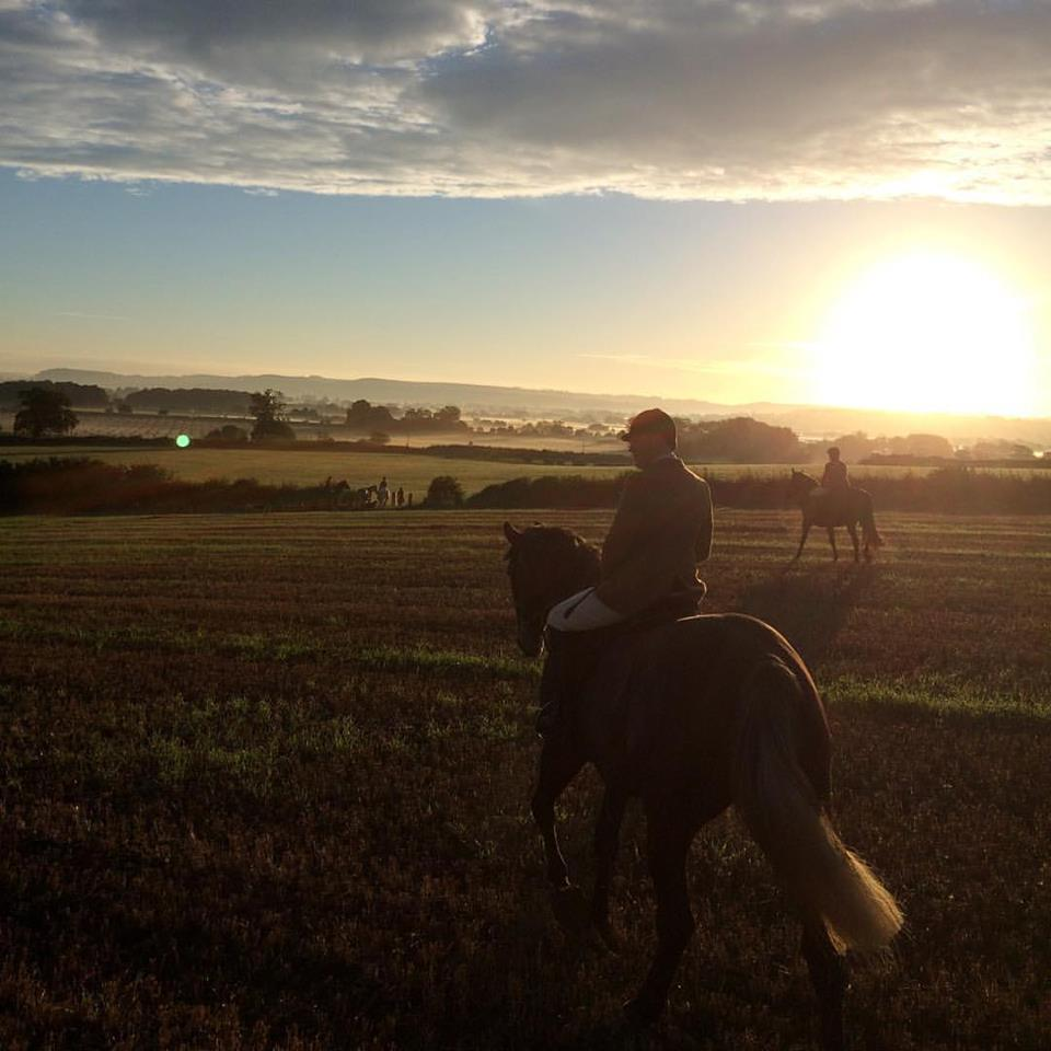 Sunrise as enjoyed by Blackmore & Sparkford Vale subscribers in South-West England.  The B&SV is Blackthorn & Brook's home hunt - great horses, lovely people and country to suit everyone!